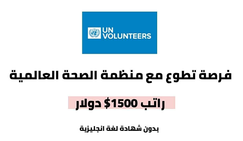 فرصة تطوع مع منظمة الامم المتحدة ممولة بالكامل